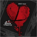 Acid Black Cherry Lツアー2015年11月24日ライブセトリとレポin日本ガイシホール1日目